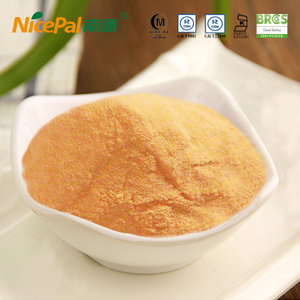 Bulk Green Papaya Powder für die Haut